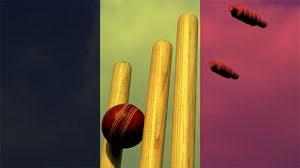 Belgium-Cricket2